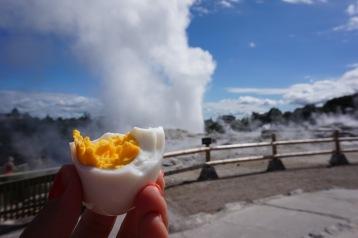 Te Puia Geyser Rotorua New Zealand - Theatress Travels