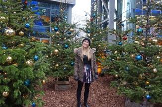 Berlin Christmas Markets - Theatress 14