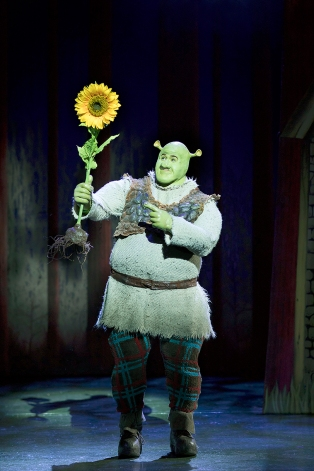 Shrek the Musical - UK Tour - Review - Theatress