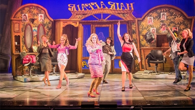 Legally Blonde the Musical UK Tour Review - Theatress